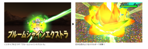 trainer-and-pokemon-z-move3